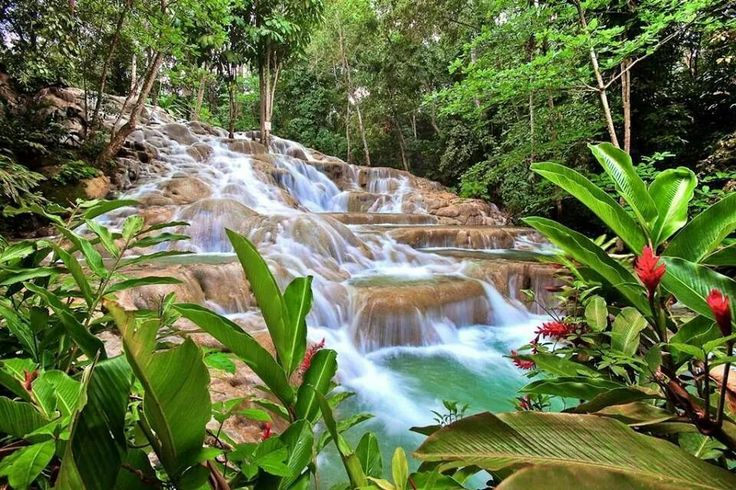 Dunn river,jamaica