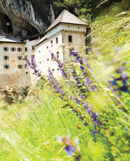 Bienvenue au château de Predjama non loin du port de #Koper https://seagnature.info/2aFewbc #croisière #croatie