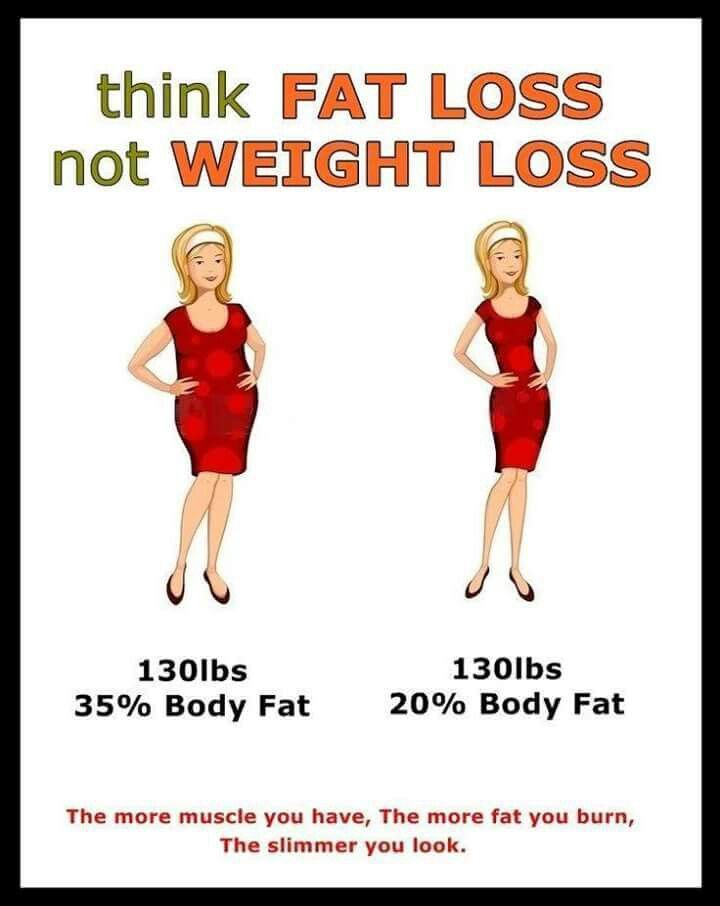 lose body fat percentage not weight
