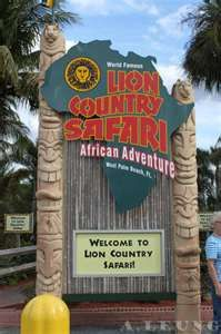 Lion Country Safari - Loxahatchee, Florida Been there, done that! In our Grandfather's Cadillac! Oh the memories!