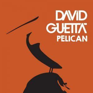David Guetta-Pelican, Jack Back Records, http://watchthis.hu/david-guetta-pelican/