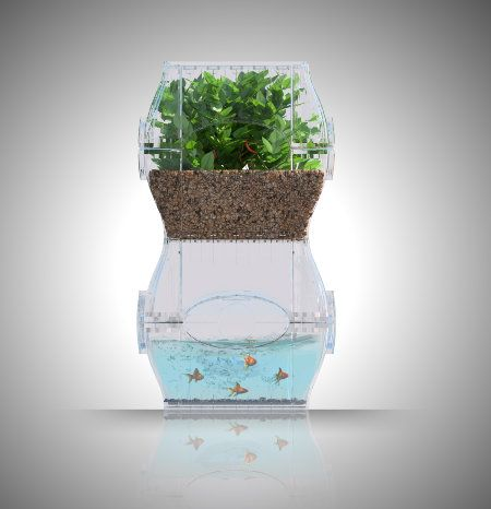 17 best images about desktop aquapponic systems on for Can you use distilled water for betta fish