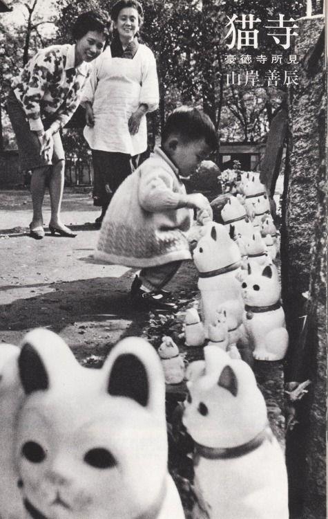 tsun-zaku:  山岸善辰「猫寺-豪徳寺所見」 日本カメラ1966年7月特大号 http://anamon.net/?pid=84599030