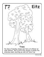 Coloring Page Fig Tree.  Eitz is Heberw for Tree coloring page Find more original art 176 best Happy Birthday Trees images on Pinterest b day