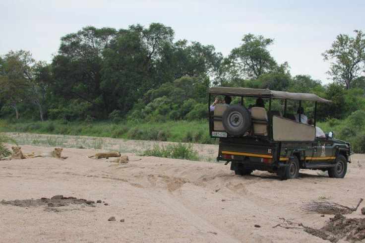 Great Wildlife Sightings at #Jock in November. #Biyamiti & Mitomeni Rivers