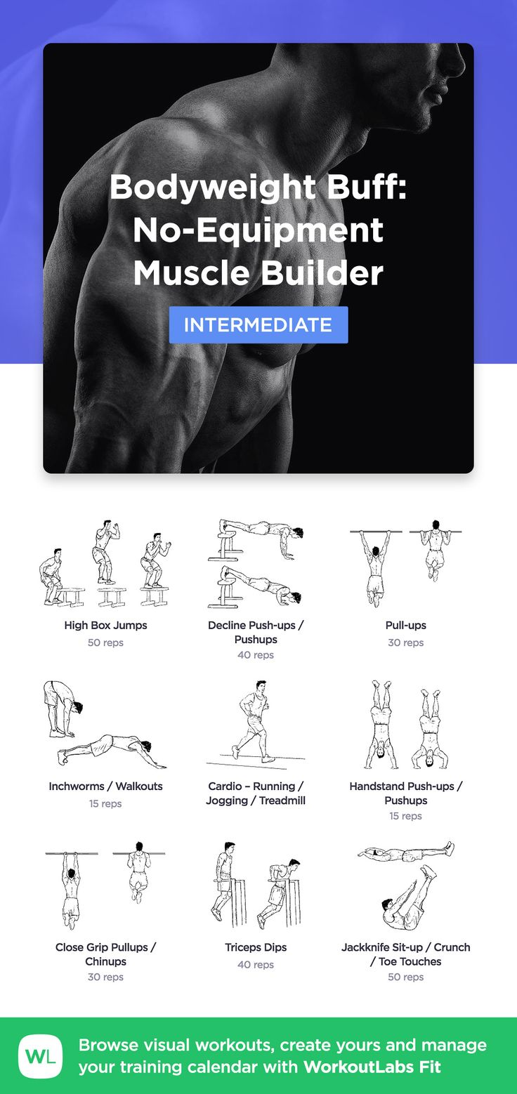 Bodyweight Buff: No-Equipment Muscle Builder Workout for Men by WorkoutLabs Fit · View and download printable PDF: https://workoutlabs.com/s/AupWP