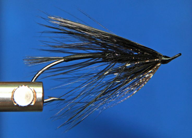 https://flic.kr/p/dPn1Jt | Black Spey Fly | Here is something a little differant.   Today while working I thought of tying   an all Black Spey Fly and had in my mind   what I wanted to use to do it.when I got home   I got the material out that I wanted,and started tying,   and this is what I ended up with.I was going to leave it all black   but added the guinea collar.The wing is 3 dyed black pheasant rump feathers   the idea on that came from the spawning purple spey fly.which is a purple…