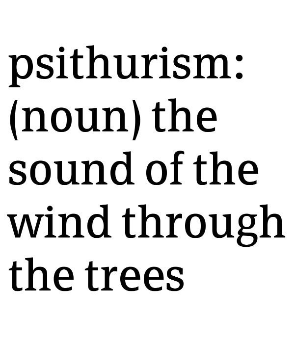 psiturism: the sound of the wind through the trees (the best lullaby)