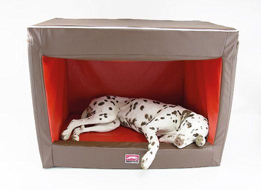 68 besten hund bilder auf pinterest haustiere hunde und. Black Bedroom Furniture Sets. Home Design Ideas