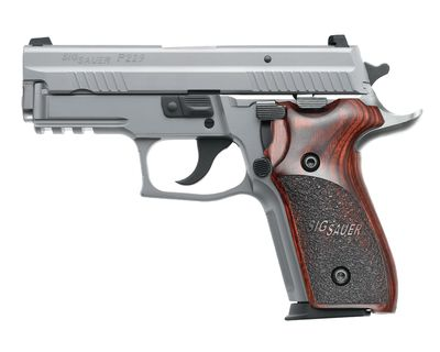 SIG Sauer. I will have a 229! - Sig Sauer P229 Elite Stainless