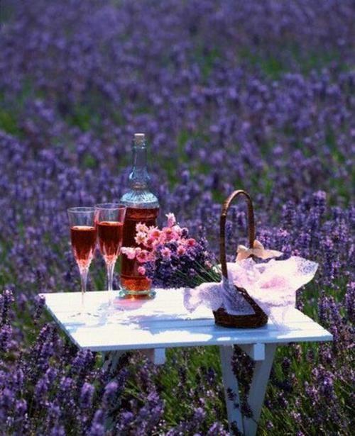 Elderberry wine in a field of lavender