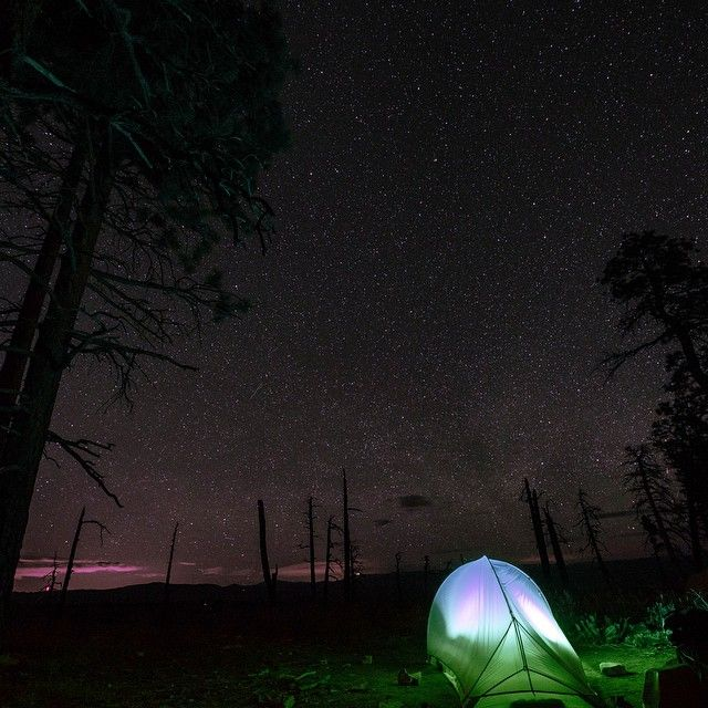 Another successful weekend under the stars! The West Rim Trail in Zion was so much bang for the buck. We almost bailed due to stormy weather predictions...so glad we weren't deterred.
