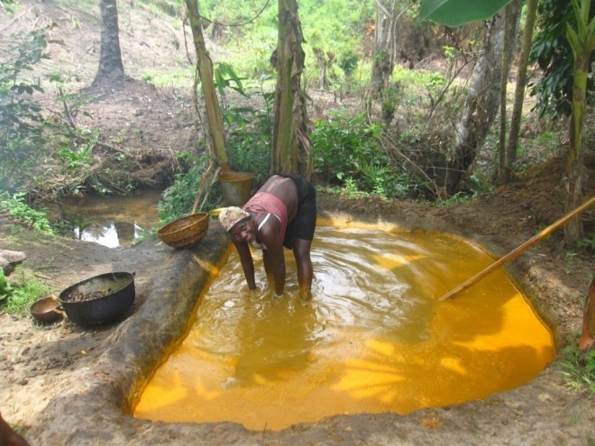 Palm oil is a staple.  Often used in rice dishes.  Liberia, Grand Bassa County making palm oil in the village
