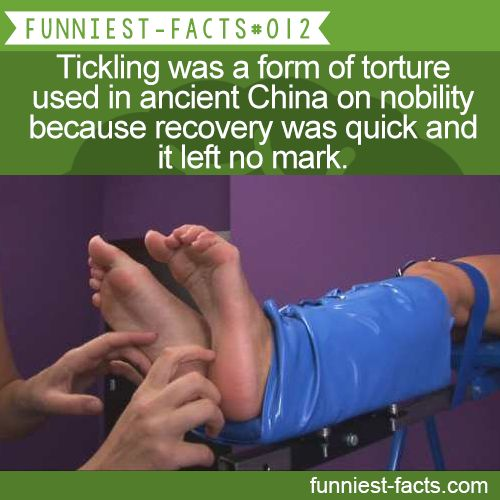 MORE OF FUNNIEST-FACTS are coming here funny, interesting & weird facts onlychina