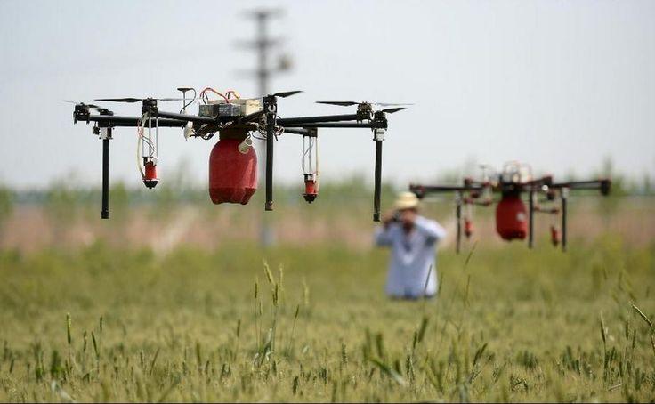 Drones en el campo #dron