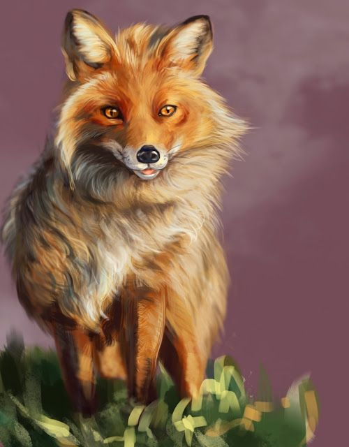 Oana's Artblog: Foxy