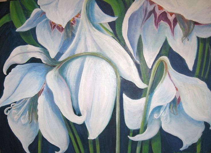 Exotic Iries oil on canvas 4 ft by 3 ft
