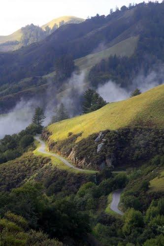 Skyline Blvd near San Jose CA  Panoramio - Photo of Windy Hill 3, San Mateo County, California