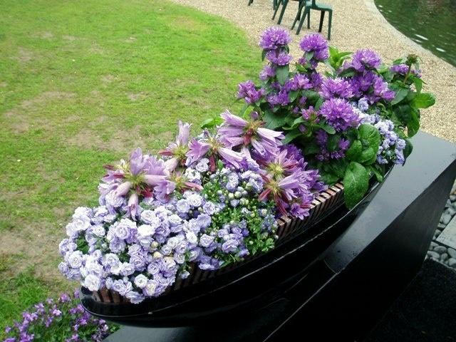 impactante arreglo de flores en azul claro lilas y violeta