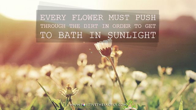 """Every flower must push through the dirt in order to get to bath in sunlight"" Motivational quote by Juha Salmela www.positivethesaurus.com #quotesaurus #positivesaurus"
