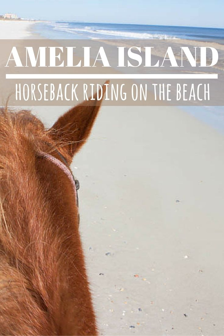 Horseback riding on the beach is a unique activity in Amelia Island, Florida. It is a relaxing way to experience the beautiful beaches of this Northern Floridian island.