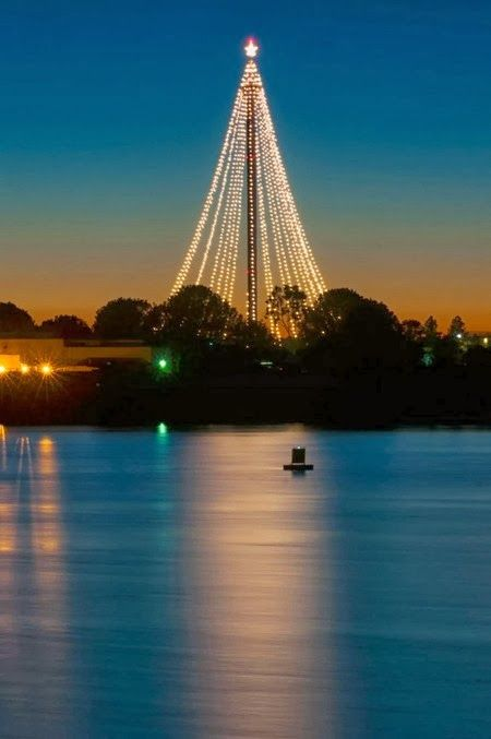 20 best images about san diego sea world pictures on for Best place to travel for christmas in usa