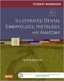 """""""Student workbook for illustrated dental embryology, histology, and anatomy : 4th ed."""" / Margaret J. Fehrenbach. St. Louis, Mo. : Elsevier/Saunders, cop. 2016. Matèries : Boca; Dents; Embriologia; Histologia; Anatomia. #nabibbell"""