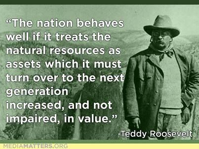 ~ Teddy Roosevelt