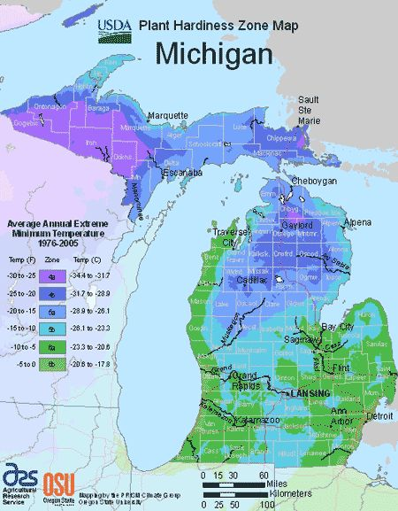 Michigan Planting Zones – USDA Map Of Michigan Growing Zones