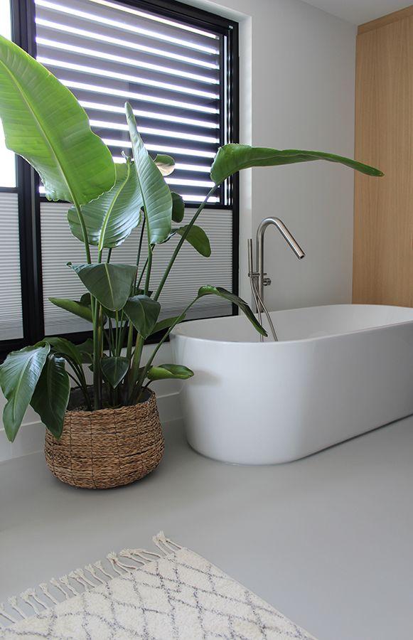 gietvloer badkamer gietvloer badkamer interieur plant