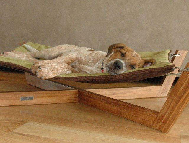 Doggie hammock... could be a DIY, but probably not such a practical idea for large dogs ;)