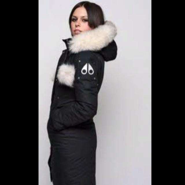 Moose Knuckle Winter Jacket Winter Coats Pinterest