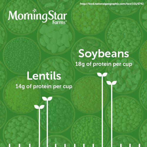 Did you know, after soybeans, lentils have the highest protein content of any vegetable?
