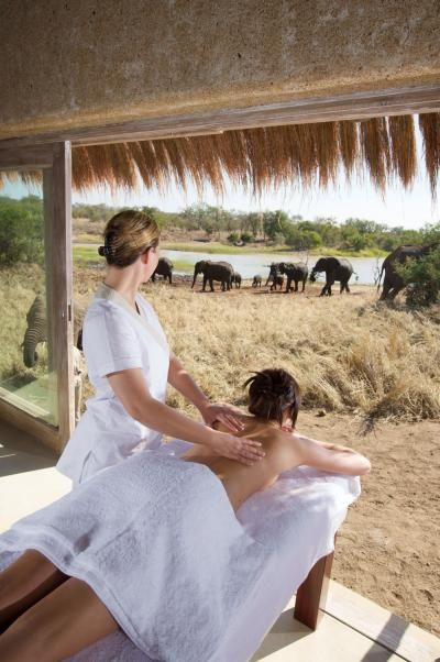 Kapama Private Game Reserve in South Africa is such a cool honeymoon location #safari