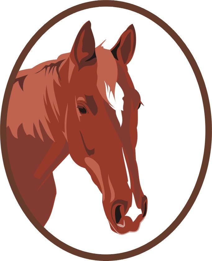 Portret konia - kolorowa grafika.