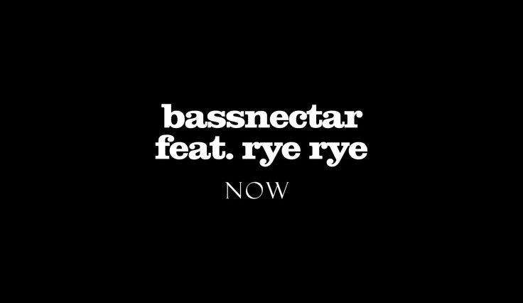 Bassnectar feat. Rye Rye - Now