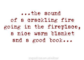 .....the sound of a crackling fire going in the fireplace, a nice warm blanket, and a good book.....