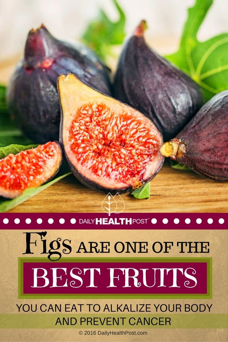 Fig trees date back as far as Neolithic�times and were known to exist circa 9400_9200 BC in the Jordan Valley.