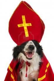 grappig rode hond priya