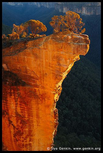 Sunrise at Hanging Rock, Baltzer Lookout, Blackheath, Blue Mountains, NSW, Australia