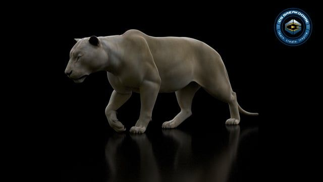 Here's a render of our Lioness walk cycle. Subscribe to our CGB Rig Library and start animating today! www.cgbreakdown.com