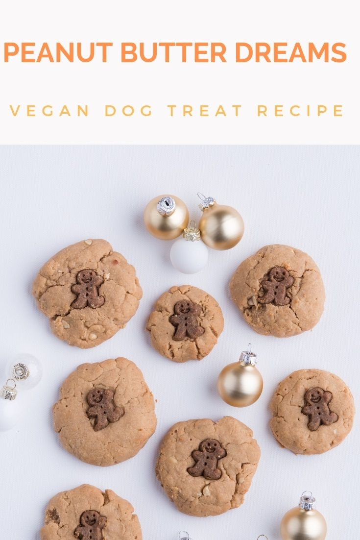 Diy Vegan Peanut Butter Dreams Dog Treats