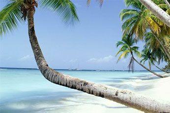 Pigeon Point. En af Tobagos mange smukke strande