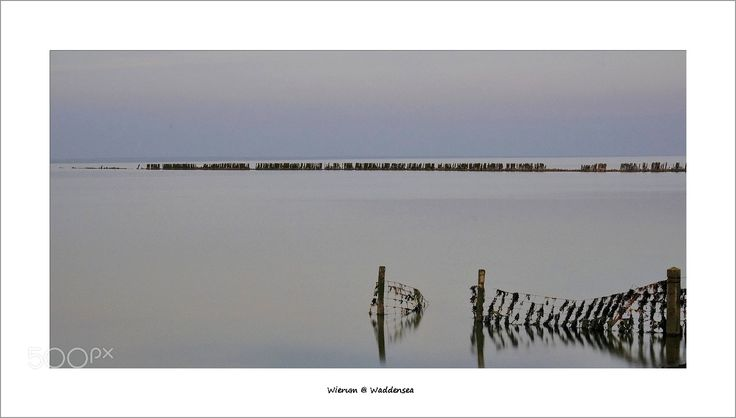 Waddensea at Wierum - Golden-Blue hour - This Beautiful location at the litte Frisian village Wierum near the Waddensea, inspires many photographers to make photos.  This photo's were made with HiTech ND-grad filters and ofcourse the use of a steady tripod