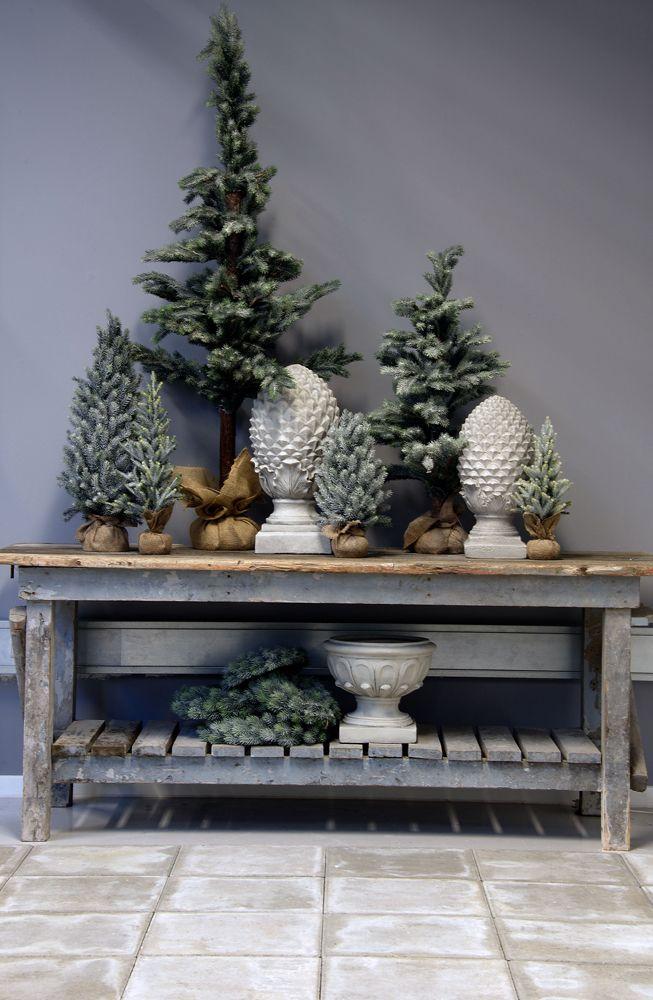 #LeneBjerre #CHRISTMAS2013 CHRISTMAS PINE #Christmas trees.