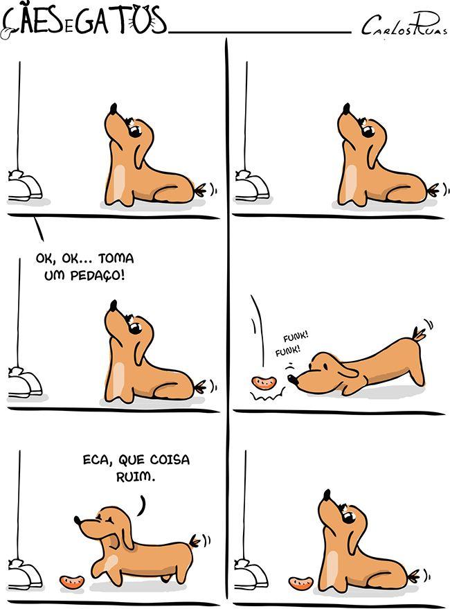 Cães e Gatos – Comida