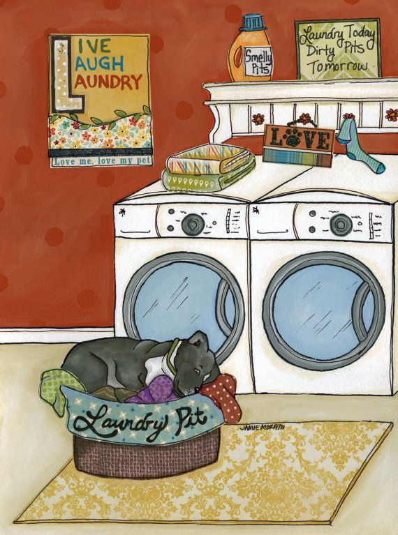 Laundry Pit | Laundry room colors and Pit bull art