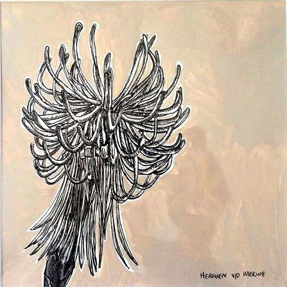 Hermien Van Der Merwe;  Title: Fynbos:  Table Mountain Fynbos 12 Medium: Pen-and-Ink drawing on paper with oil paint background Size: 200 x 200mm