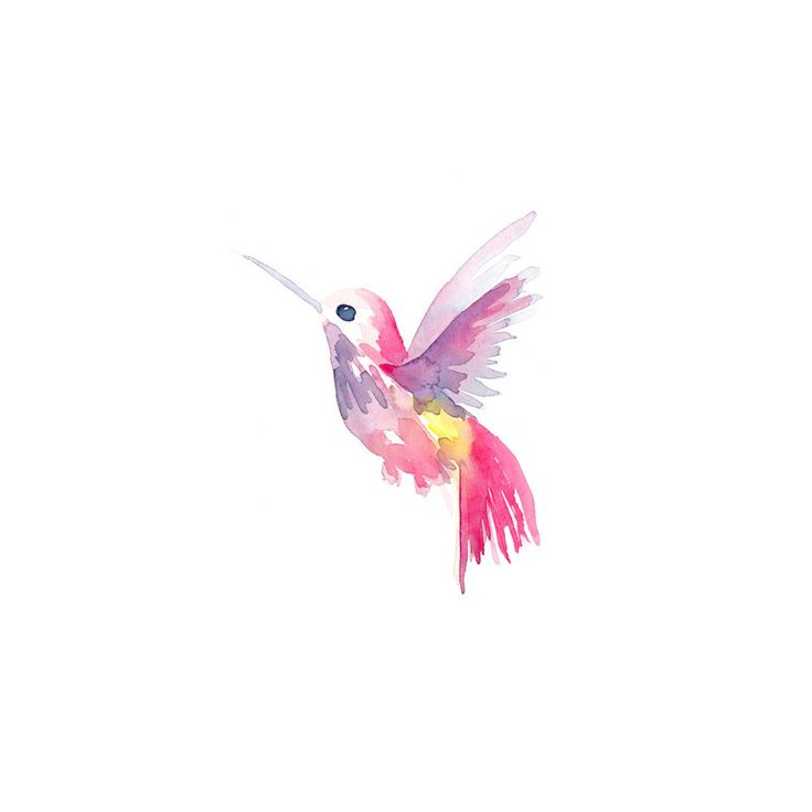 'Hello Hummingbird' #watercolor #hummingbird #artprint by Jocelyn Edin @minted