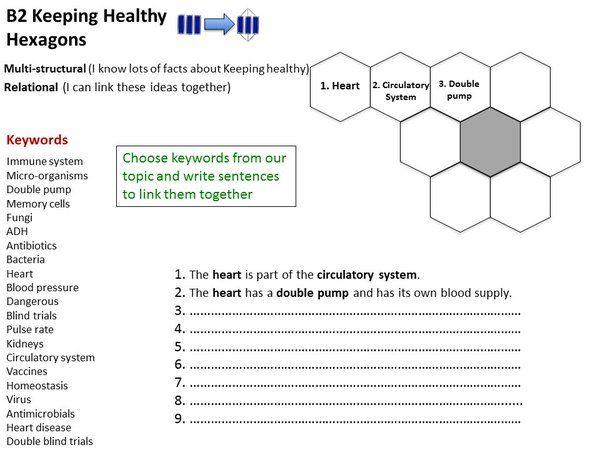 """B Yusuf on Twitter: """"@aegilopoides @danielharvey9 21C B Sci rev using @Teachanana's hexagon item Dwnld here -> https://t.co/QKEluDPHdS https://t.co/cM7ROBto4o"""""""